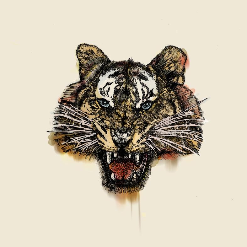 AndrésRYepes-Tigre