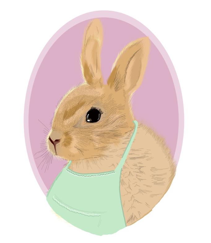 Conejo2