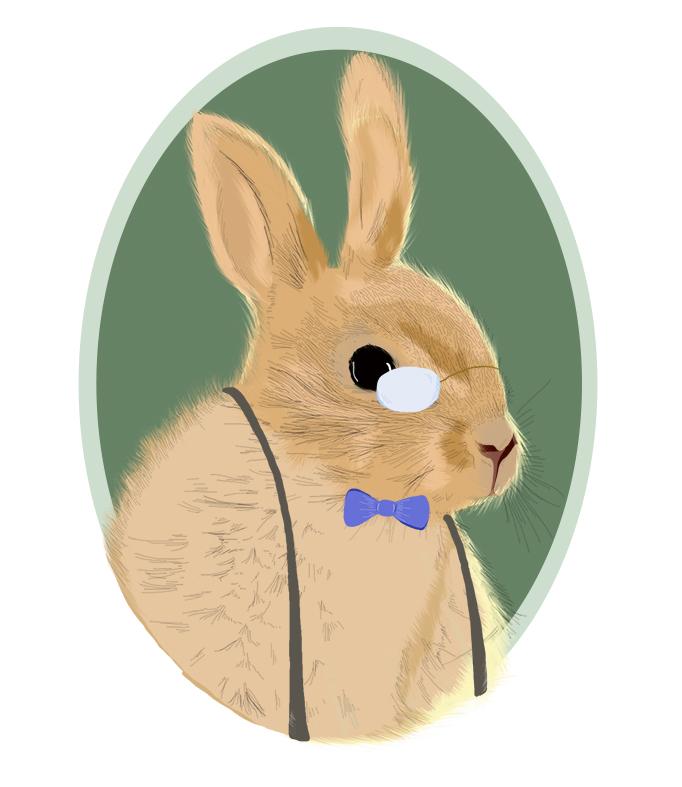 Conejo3