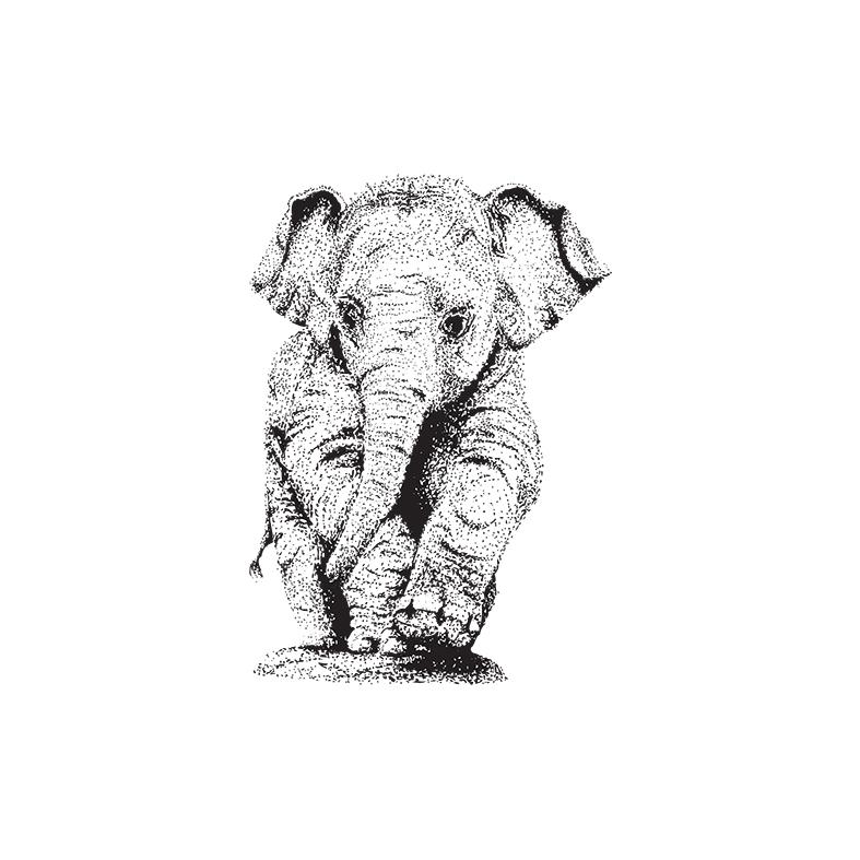 elefante vectores