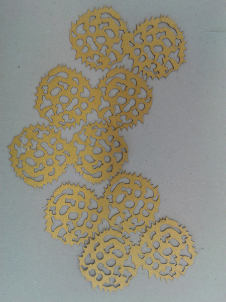 sabina polen